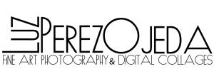 Logo Luz Perez-Ojeda